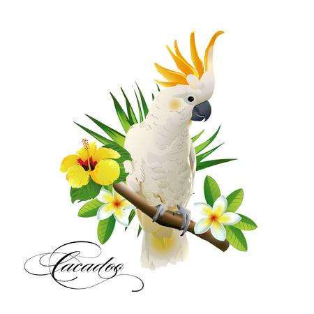 Loro cacatúa en las ramas tropicales con las hojas y las flores en el fondo blanco. Ilustracion vectorial