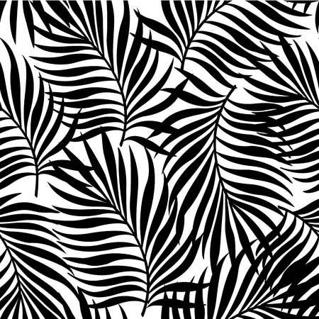 Seamless repeating pattern with silhouettes of palm tree leaves in black on white background. Reklamní fotografie - 83315808