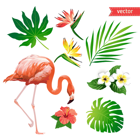 Set of tropical flowers, leaves and bird. Flamingo. Vector. Vettoriali