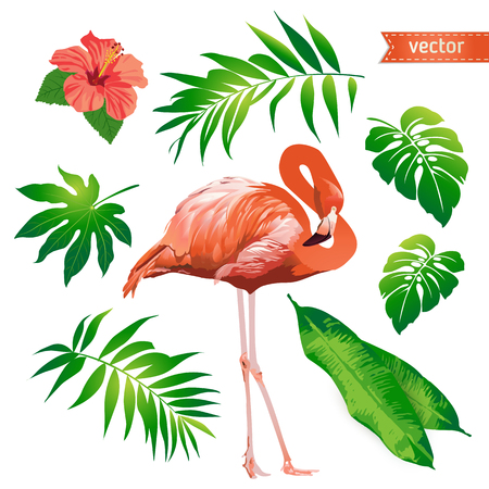 Set of tropical flowers, leaves and bird. Flamingo. Vector. Illustration