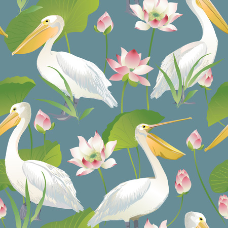 Vector seamless pattern pelican and lotus flowers and leaves.