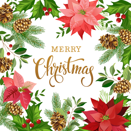 Christmas design composition of poinsettia, fir branches, cones, holly and other plants. Cover, invitation, banner, greeting card. Vector illustration.