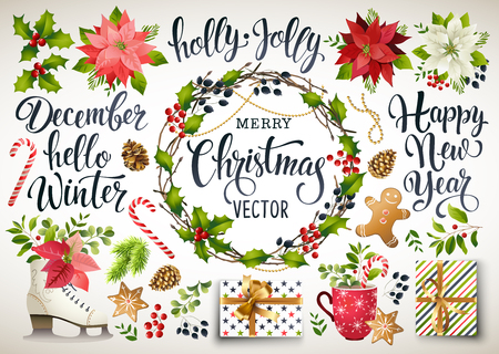 Christmas set design composition of poinsettia, fir branches, cones, holly and other plants. Cover, invitation, banner, greeting card. Vector illustration.