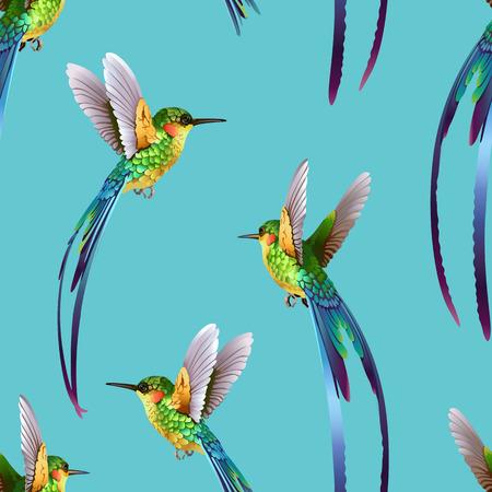 Beau motif de colibris. Banque d'images - 91864552