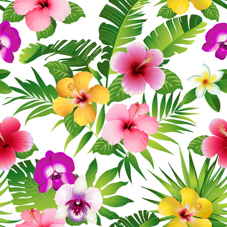 Tropical flowers and leaves on white background. Çizim