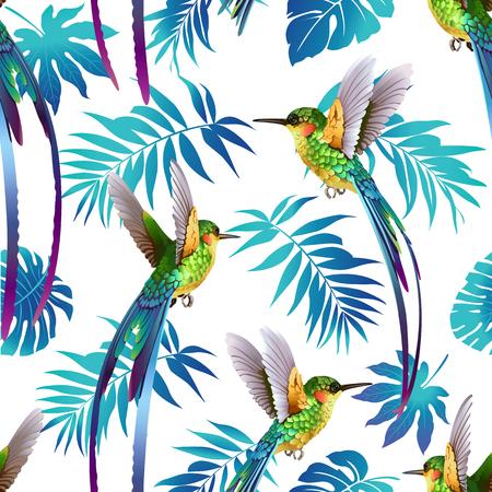 Koliber i tropikalne kwiaty tło wektor wzór.