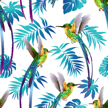 Hummingbird and Tropical Flowers Background Seamless pattern vector.