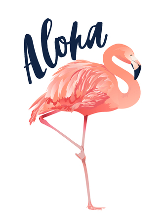 Aloha flamingo illustration Style Isolated on White Background. Banque d'images - 108534497