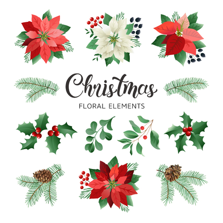 Poinsettia Flowers and Christmas Floral Elements Watercolor Style vector.