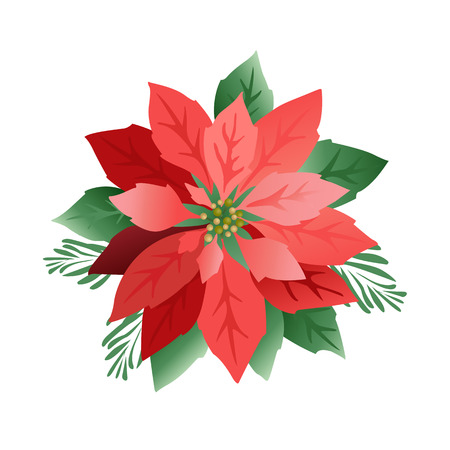 Christmas poinsettia flowers, red leaves. Cover, invitation, banner greeting card Vector illustration