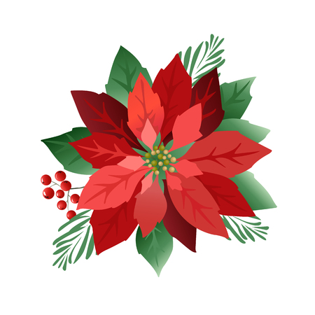 Christmas poinsettia flowers, red leaves. Cover, invitation, banner greeting card Vector illustration Banque d'images - 112692252