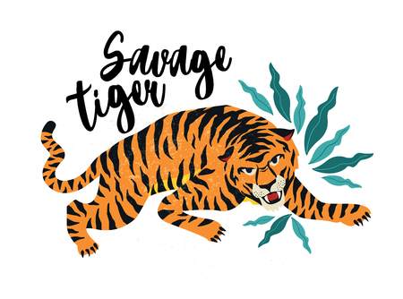 Savage Tiger. Vector illustration of tiger with tropical leaves. Trendy design for card, poster, tshirt and other use.