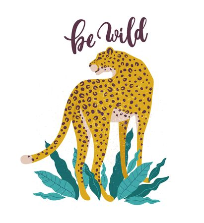 Be Wild slogan. Leopard. Typography graphic print, fashion drawing for t-shirts. Vector stickers, print, patches vintage.