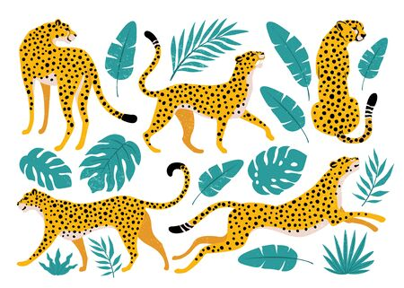 Vector set of leopards and tropical leaves. Trendy illustration.