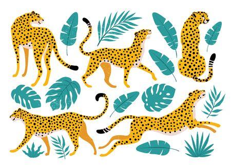 Ensemble de vecteurs de léopards et de feuilles tropicales. Illustration à la mode. Vecteurs
