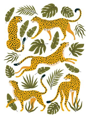 Vector set of leopards or cheetahs and tropical leaves. Trendy illustration. Ilustracja