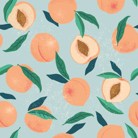 Peach or apricot seamless pattern. Hand drawn fruit and sliced pieces. Summer tropical endless background. Vector fruit design for label, fabric, packaging 向量圖像