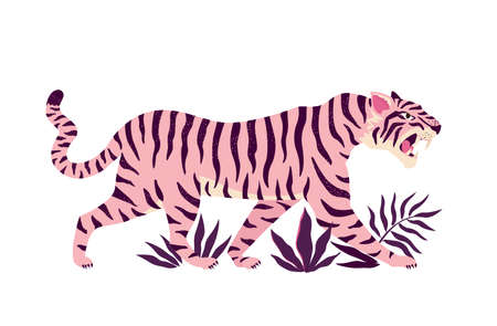Tiger and tropical leaves. Trendy vector illustration. Illusztráció