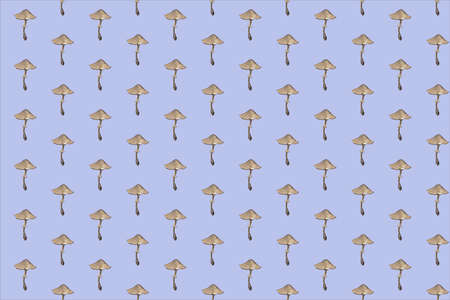 Amanita. Botanical seamless pattern with red mushrooms. Natural elements hand painted with color pencils. Floral watercolor background Stock fotó