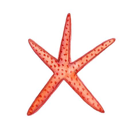 Hand paint watercolor coral sea ocean icon set design scrap book paper, textile, web sites 스톡 콘텐츠