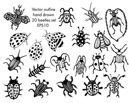 Hand drawn beetles set. Black and white insects for design, icons, logo or print. Drawn with dots. Great illustration for Halloween.  イラスト・ベクター素材