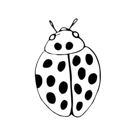 Hand drawn beetles set. Black and white insects for design, icons, logo or print. Drawn with dots. Great illustration for Halloween. Иллюстрация