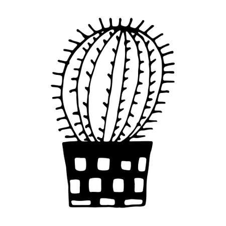 Hand drawn vector illustration of cactus in the pot. Doodle outline drawing isolated on white background. Exotic green houseplant. Home interior decoration. Black and white template for coloring