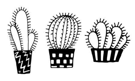Collection of hand drawn vector illustration of cactuses in the pot. Doodle outline drawing isolated on white background. Exotic houseplant. Home interior decoration. Black and white coloring template Ilustrace