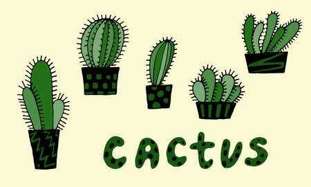 Collection of hand drawn vector illustration of cactuses in the pot. Doodle outline drawing isolated on yellow background. Exotic green houseplant. Home interior decoration. Design element