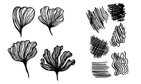 Silhouette de pétales de fleurs dessinés à la main. Illustration vectorielle de ligne art. Croquis botanique isolé sur fond blanc. Collection d'éléments pour la conception de cartes de voeux, d'affiches ou d'invitations de mariage Vecteurs