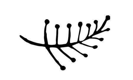 Hand drawn vector illustration of herbs. Doodle floral element. Spring and summer symbol. Contour otline drawing of simple black twigs and flowers Ilustração