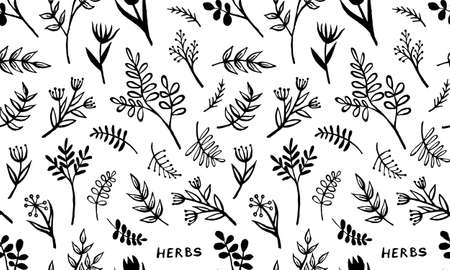 Hand drawn vector seamless pattern with herbs. Doodle floral element. Spring and summer symbol. Contour otline drawing of simple black twigs and flowers. Print design