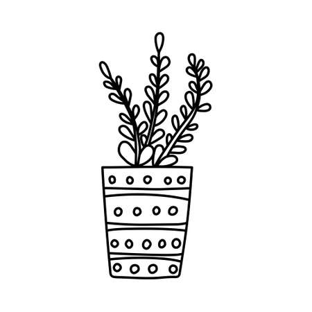Hand drawn houseplants. Vector illustration of potted plants for home isolated on white background Vektorové ilustrace