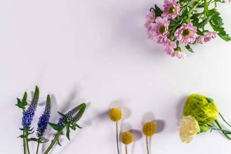 Multicolored flowers are lying. Composition from fresh flowers on a white background.