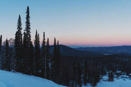 Landscape with fir trees and mountains in winter, sunset, pink sky in Sheregesh. Russia. 写真素材