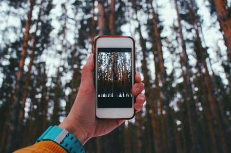 Holds the phone, takes pictures of the forest on the phone. 写真素材