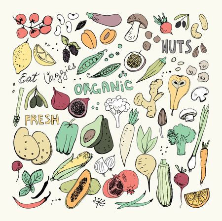Organic Fruits and Vegetables Hand Drawn Doodles.