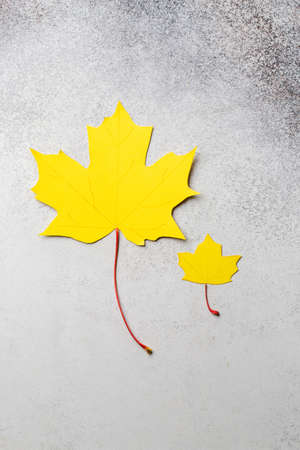 yellow autumn maple leaves paper craft concept