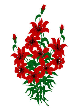 Bouquet of beautiful red lilies Illustration