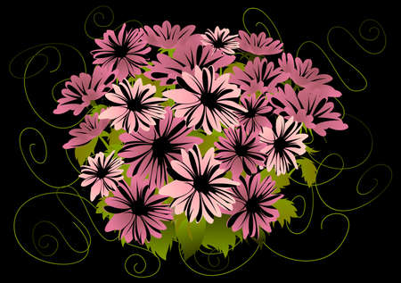 Illustration of abstract pink asters with dark background