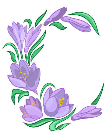 Illustration of abstract crocuses frame Vector