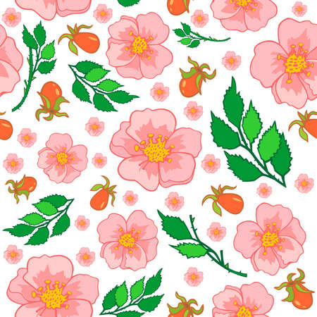 Illustration of abstract roses background with leaves and hips Vector