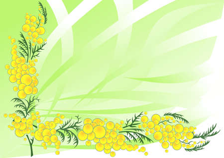Illustration of abstract mimosa branch with background