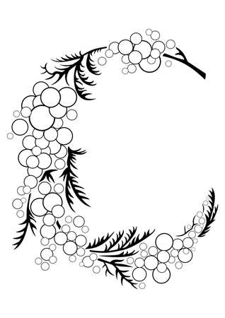 Illustration of abstract mimosa branch in black and white colours Vector