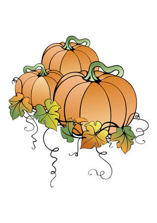 Illustration of abstract pumpkins and leaves isolated Vector
