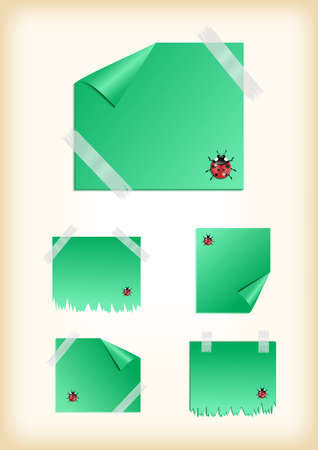 scotch tape: Illustration of green stickers with curled corner, scotch tape, ladybird and background Illustration
