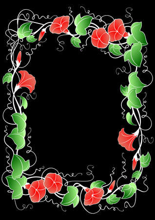 convolvulus: Illustration of abstract floral frame with leaves and bindweed flowers isolated on black