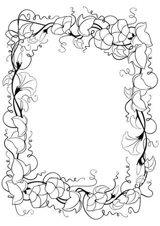 Illustration of abstract floral frame with leaves and bindweed flowers in black and white colors isolated