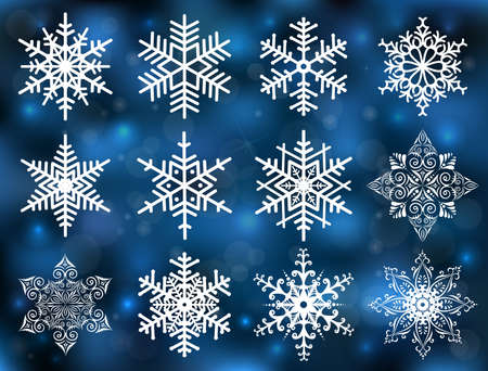 Illustration of snowflakes in various styles on fuzzy background Vector