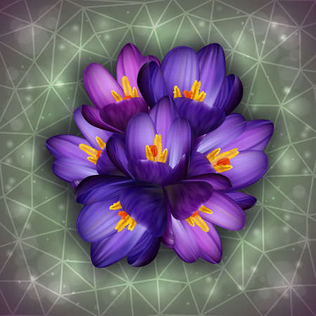 Illustration of purple crocus flowers with triangle background Vector